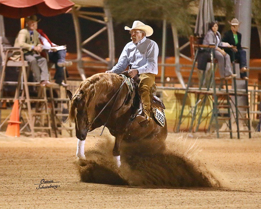 Courtesy: The North Central Working Western Horse Celebration