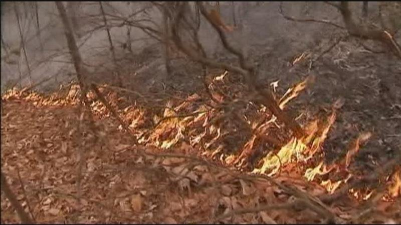 CODE ORANGE: Raging wildfires worsen air quality around Charlotte