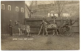 Picture Courtesy: Circusworld.wisconsinhistory.org