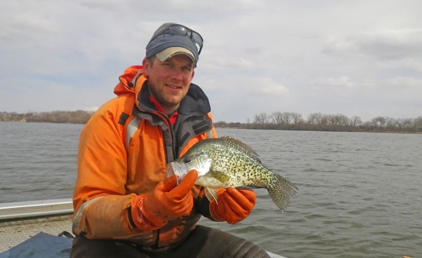 Bluegill and crappie, like this black crappie fisheries biologist Dan Oele displays, are moving in and holding in their pre-spawn locations in southern Wisconsin and can be found near fresh aquatic plant growth. Photo credit: DNR