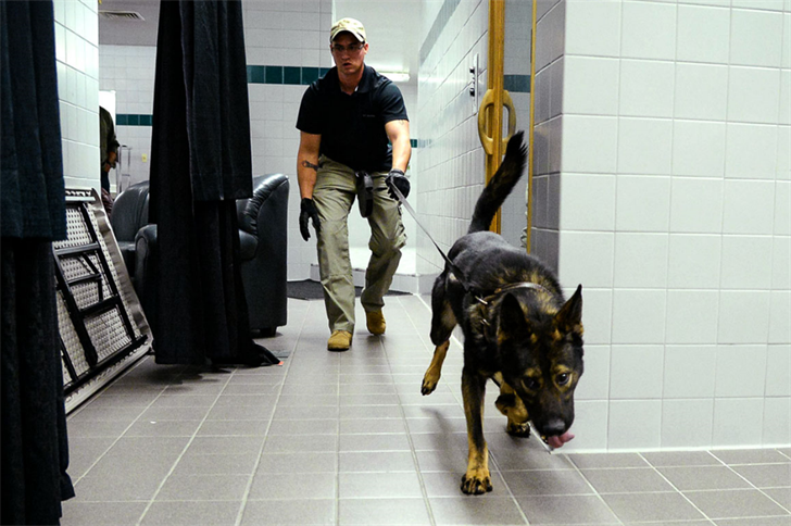 IL police official threatens to euthanize K-9 drug search dogs if the state legalizes weed