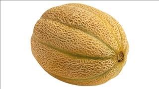 File photo of a cantaloupe