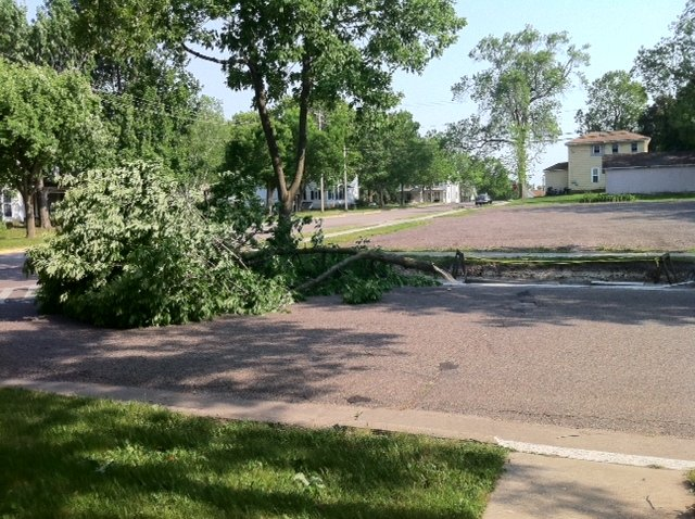 Tree down in Baraboo. Sent by Danielle Lama