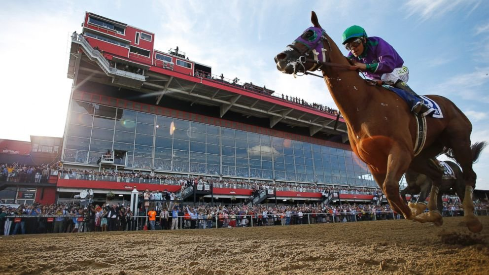 AP Photo of Preakness win