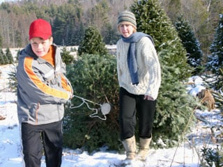 Avoid plastic and choose a 'real' Christmas tree. (©istockphoto.com/James Boulette)