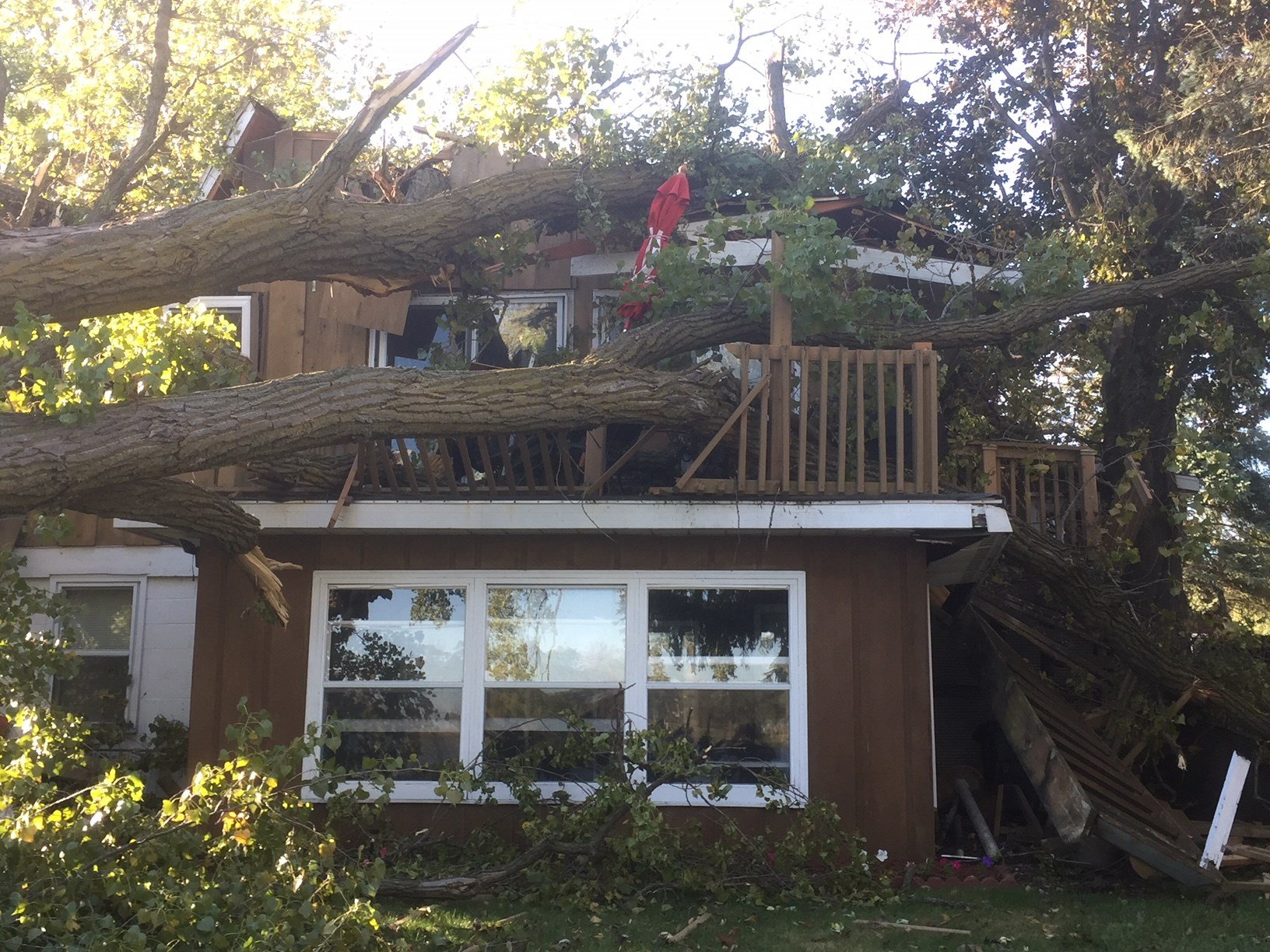 Strong winds causes tree to fall on house in Pardeeville - WKOW 27 ...