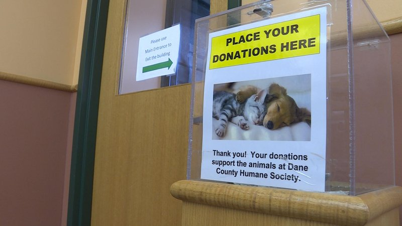 Wisconsin ranked fifth in most charitable states - KTTC