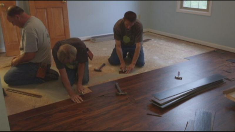 Dog Friendly Flooring Gurus Floor